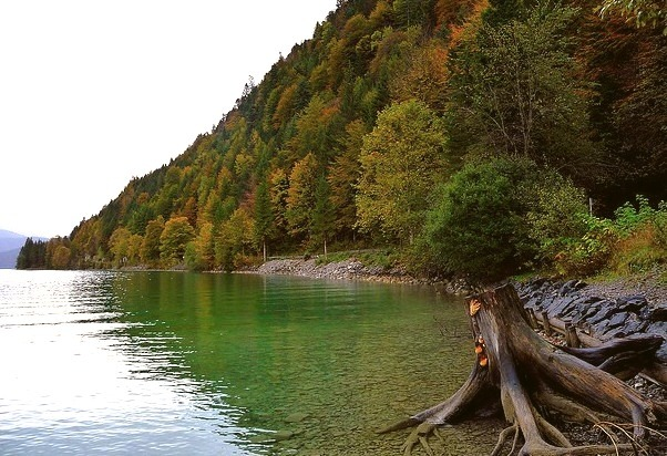 by Claude@Munich on Flickr.At the shores of Walchensee - one of the deepest and largest alpine lakes in Germany.
