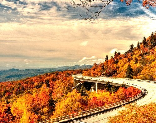 by eevy24012 on Flickr.Autumn colours at Linn Cove Viaduct - North Carolina, USA.