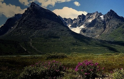 Paradise in southern Greenland. Qinngua Valley