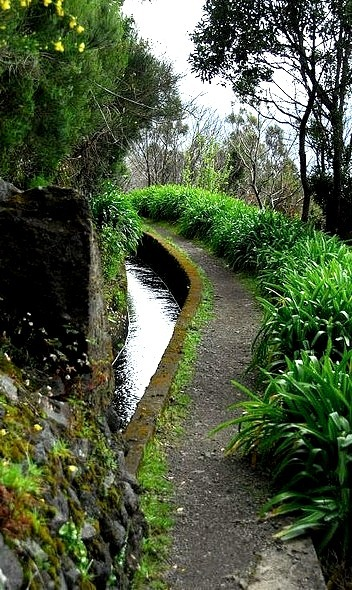 Waterways of Madeira Island, Canary Islands, Portugal