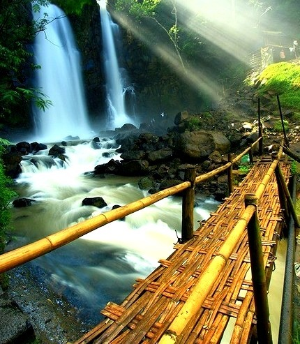 Bamboo Bridge, Japan