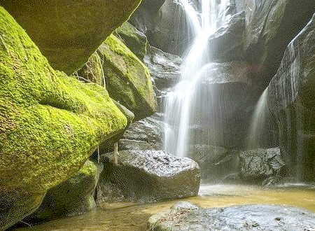 Dismals Canyon, Franklin County, Alabama