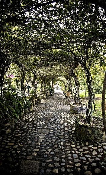Walkway at Hosteleria and Hacienda Pontavi, Salinas, Ecuador